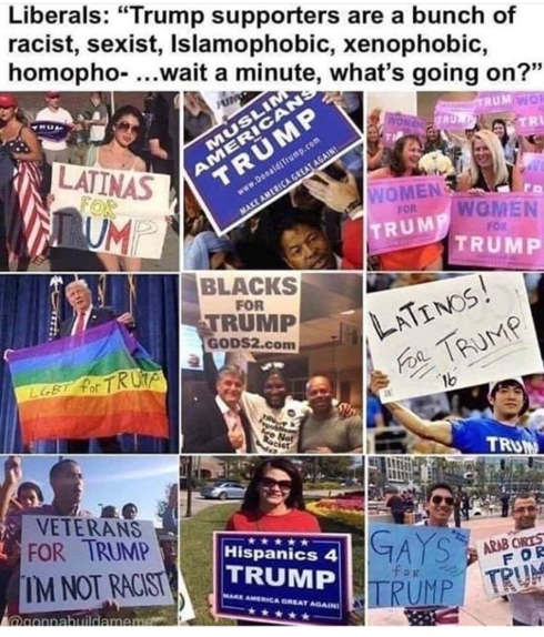 liberals trump supporters homophobic racist sexist trump signs all minority groups