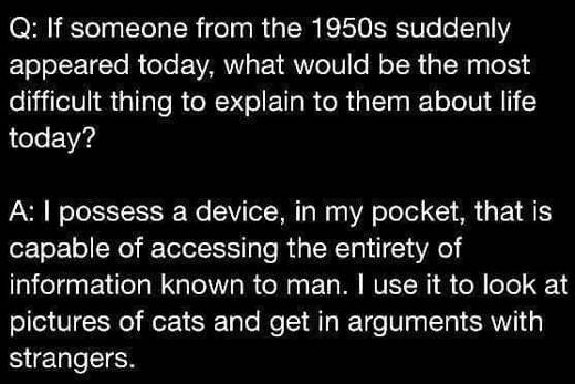 q and a 1950s hold device entirety of human knowledge use it pictures of cats get in arguments with strangers