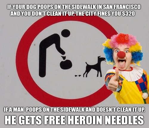 san francisco dog poops on sidewalk 320 dollar fine man does it free heroin needles