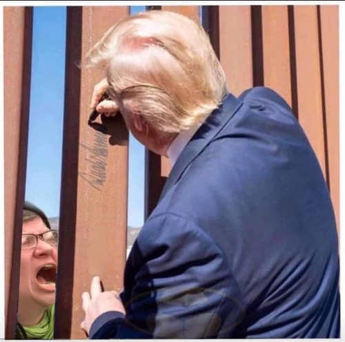 trump autographing wall liberal crying