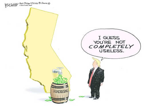 trump california guess youre not completely useless