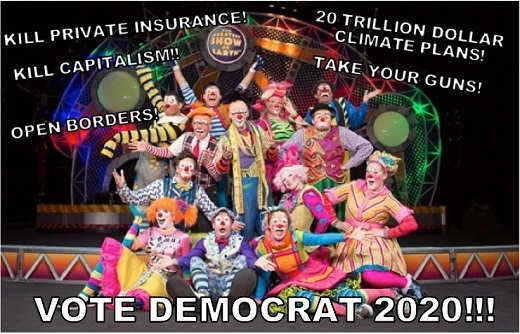 vote democrat 2020 kill private insurance capitalism open borders trillion climate plans take guns