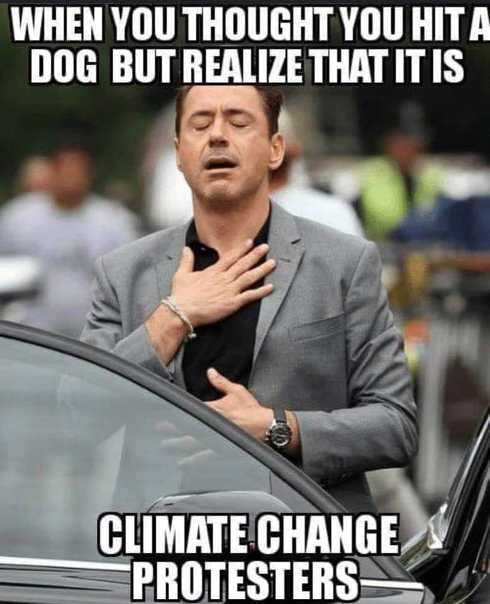 when you thought you hit a dog but realize just a climate change protester
