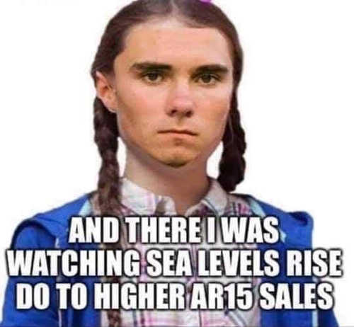 david hogg there i was watching sea levels rise do to higher ar 15 sales greta