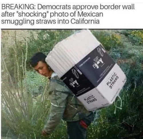 democrats approve border wall after shocking photo of mexican smuggling straws to california