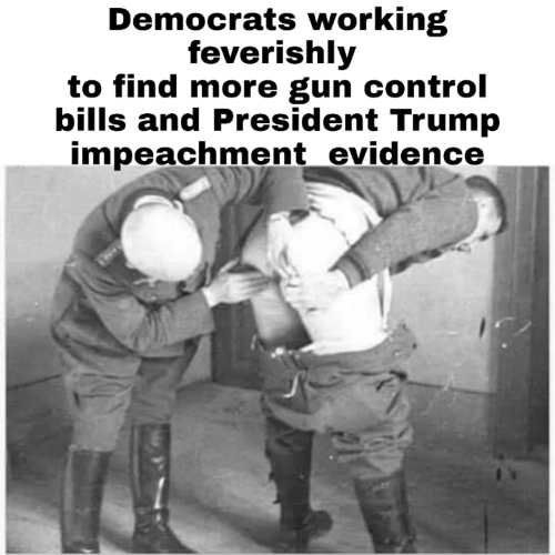 democrats searching ass for new gun laws and trump impeachment evidence