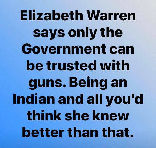 elizabeth warren says only government can be trusted with guns being indian think shed know better