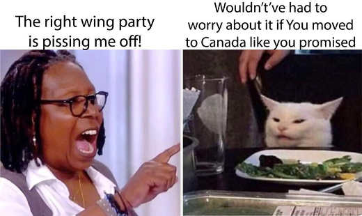 diaz angry lady cat whoopi goldberg right wing pissing me off wouldnt if moved to canada tds