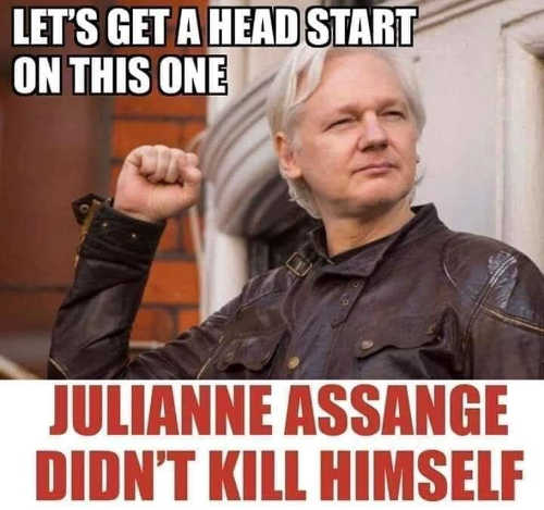 head start julianne assange didnt kill himself