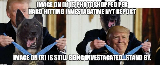 image trump dog getting medal photoshopped new york times