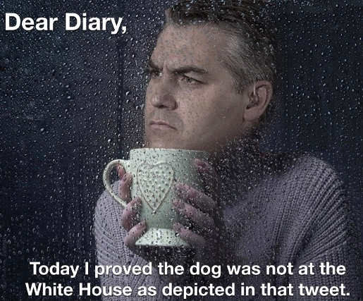 jim acosta today proved dog depicted in tweet wasnt at white house