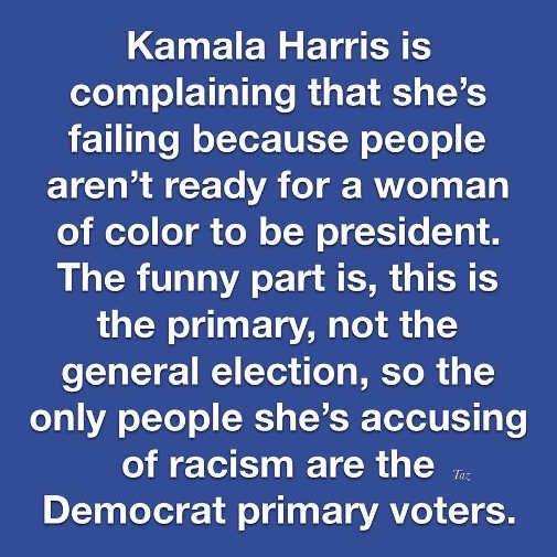 kamala harris complaining voters not ready for woman of color president democrat primary voters