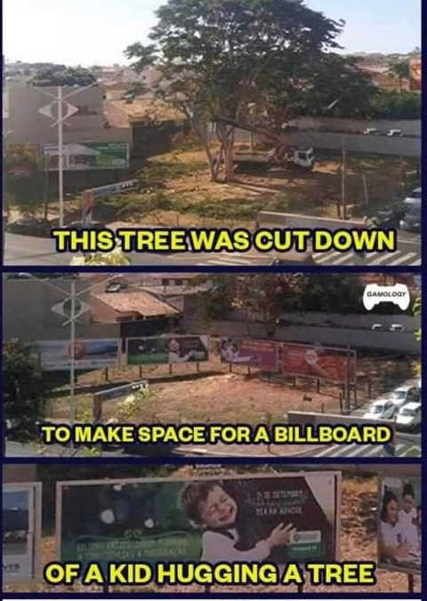 tree cut down for billboard of kid hugging tree