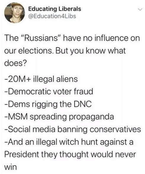 tweet educating liberals russians didnt interfere election illegals voter fraud mainstream media propaganda