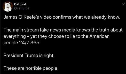 tweet james okeefe video confirms media horrible people