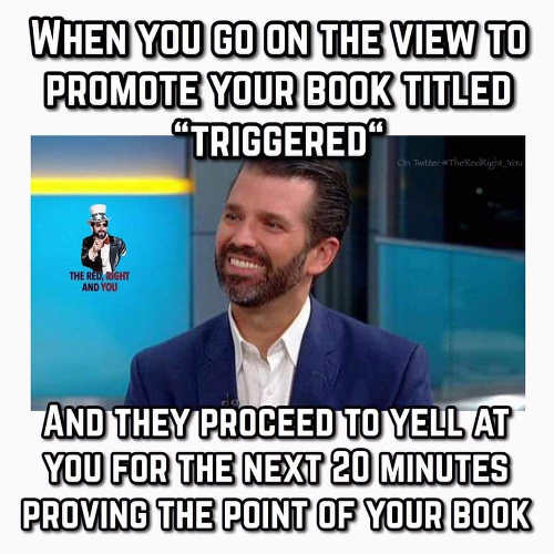 when you go on view to promote book triggered and they proceed to prove your point the view donald trump jr