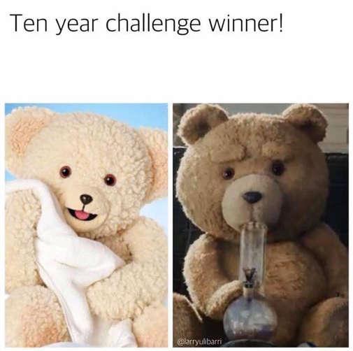 10 year challenge winner snuggle ted teddy bear