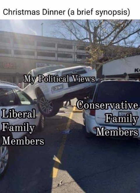 christmas dinner synopsis liberal family members conservative car between