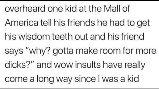 overheard from kid at mall of america wisdom teeth out gotta make room for dicks
