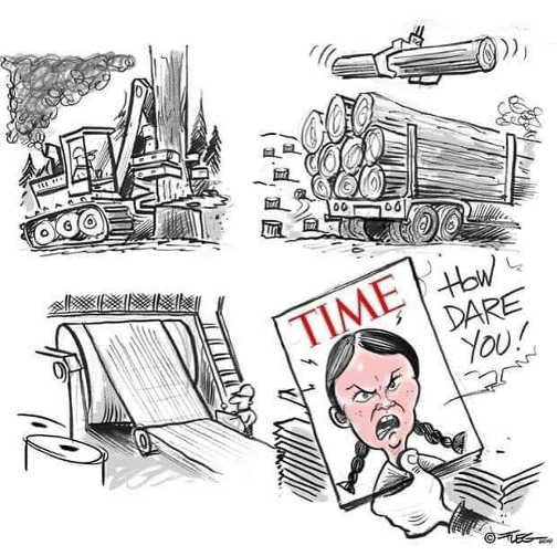time magazine destroying trees for magazine how dare you greta thunberg