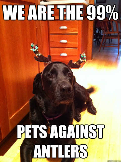 we are the 99 percent pets against antlers