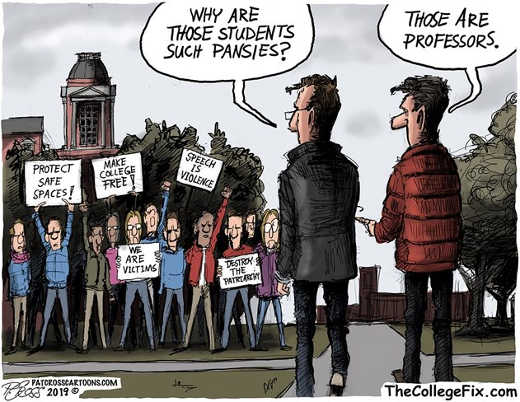 why are students such pansies those are professors protect safe spaces speech is violence
