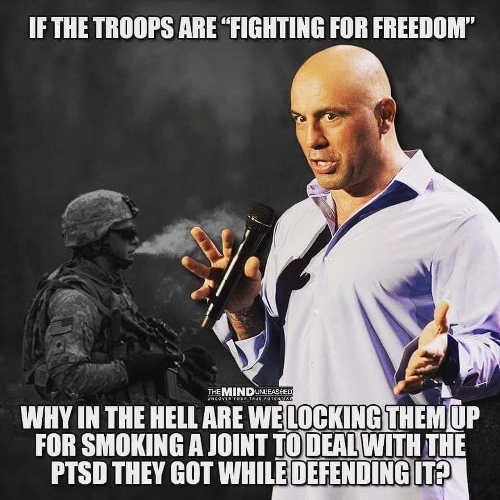if troops fighting for freedom why jail someone smoking joint to get over ptsd
