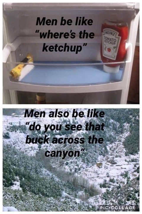 men where is ketchup in refrigerator look at buck across canyon