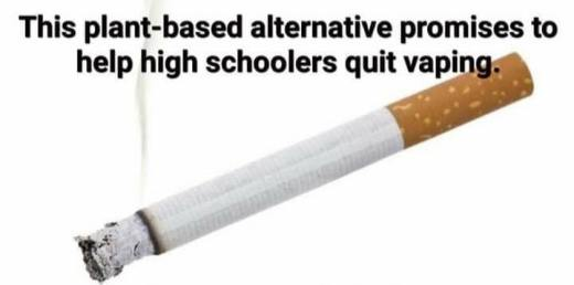 this plant based alternative promises to help high schoolers quit vaping