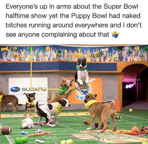 everyone complaining superbowl half time show puppy bowl bitches all naked