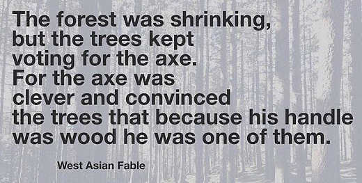 quote forest shrinking trees kept voting for the axe one of them wood