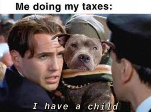 titanic me doing my taxes i have a child dog