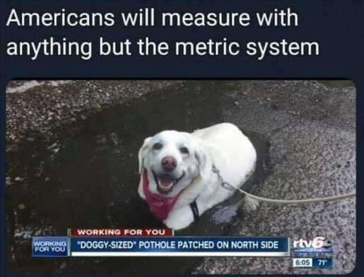 americans will measure with anything but metric system dog sized pot holes