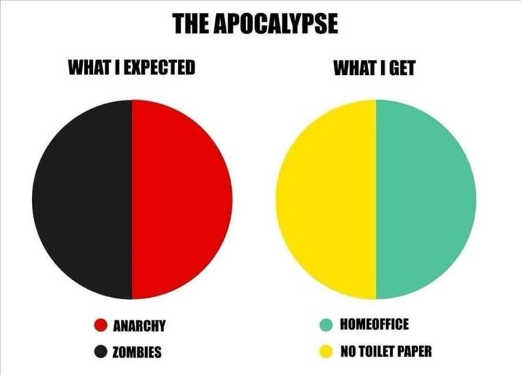 apocalypse what i expected anarchy zombies what i got home office toilet paper
