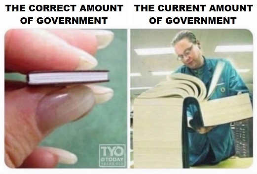 correct amount of government vs current amount books