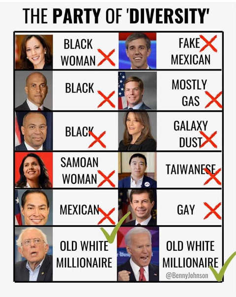 democrat party of diversity bernie sanders joe biden old white millionaires only left
