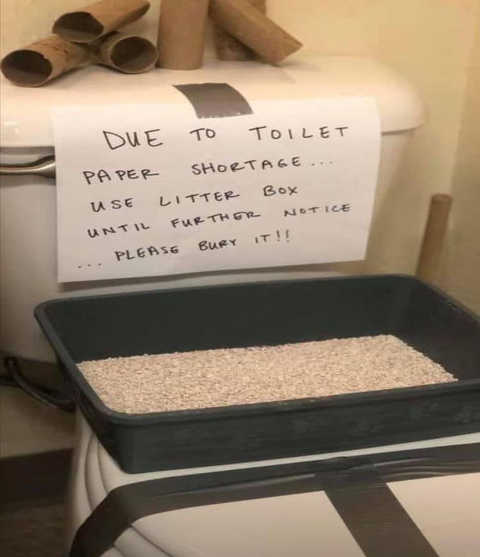 due to toilet paper shortage use litter box bury please