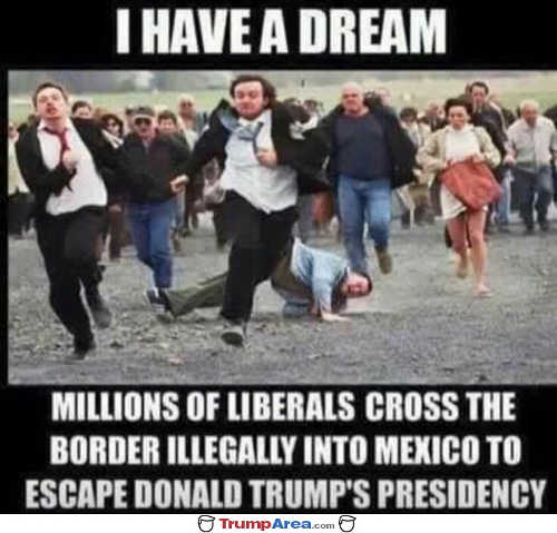 i have a dream millions of liberals cross border illegally to descape trump presidency