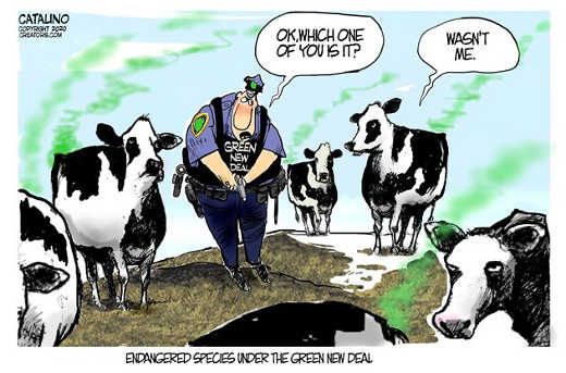 ok which one of you is it green new deal farting cows