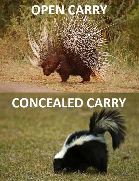 open cary porcupine skunk concealed carry