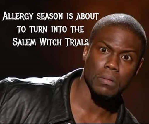 allergy season is about to turn into the salem witch trials