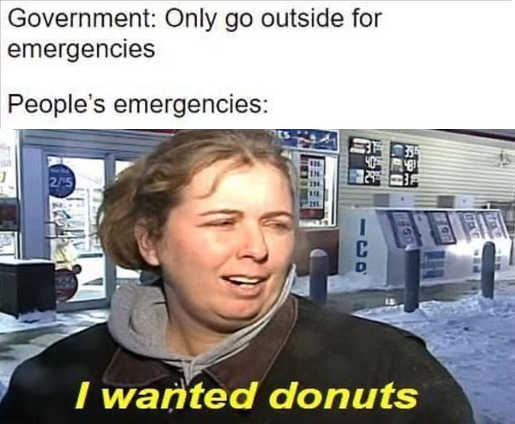government only go outside for emergencies people i wanted donuts