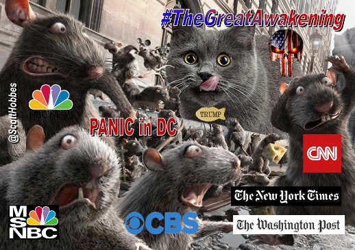 great awakening trump cat media rats cnn nyt nbc cbs
