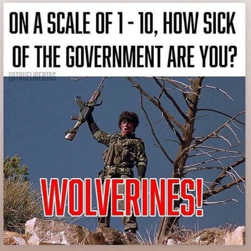 red dawn on scale 1 10 how sick of government are you wolverines