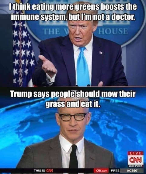 tump think eating more greens boost immune system cnn trump says people should mow grass and eat it