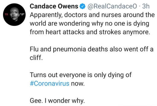 tweet candace owens doctors wondering why no one is dying heart attacks flu pneumonia all corona now