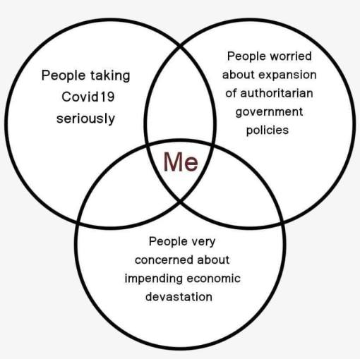venn diagram people taking covid19 seriously authoritatian government impending economic devastation