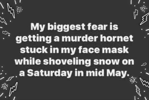 biggest fear murder hornet stuck in face mask shoveling snow mid may