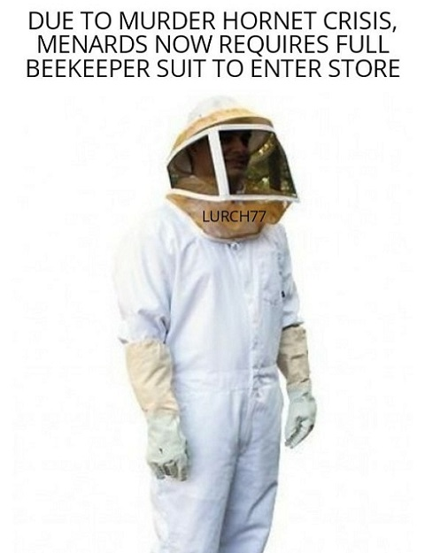 due to murder hornet menards now requires full beekeeper suits store entry