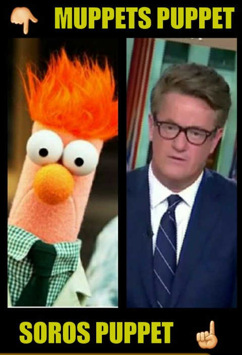 muppets puppet soros puppet joe scarborough